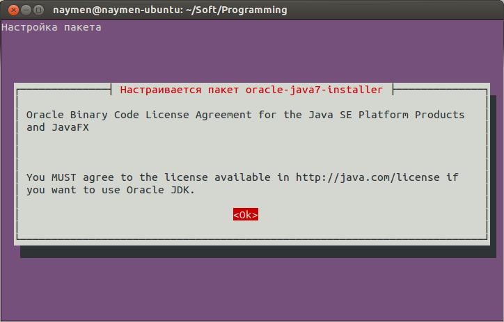 naymen@naymen-ubuntu: ~-Soft-Programming_001